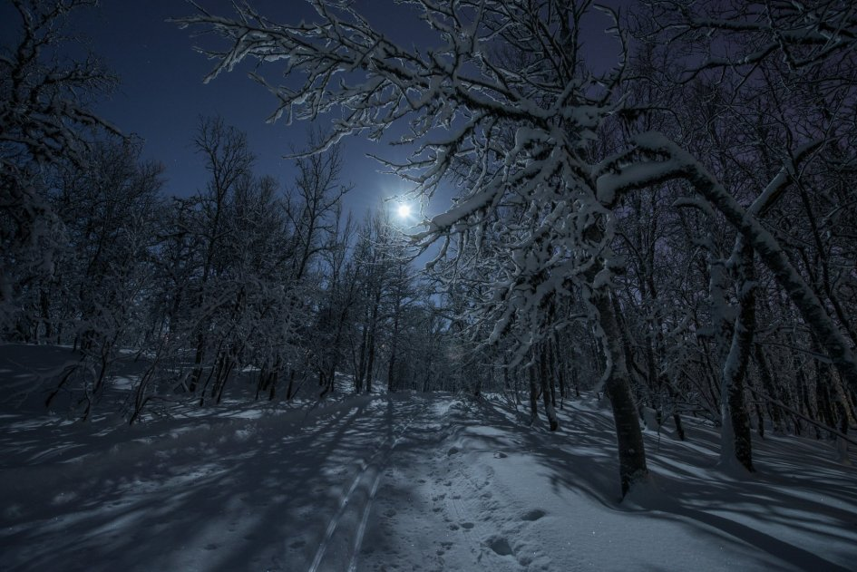Blessing for the Longest Night