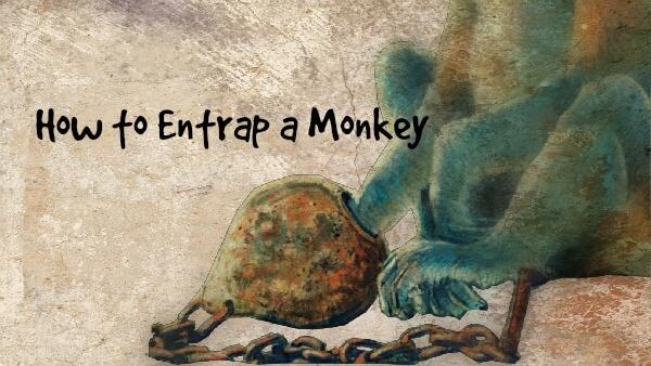 Catching Monkeys - Bill Johnson